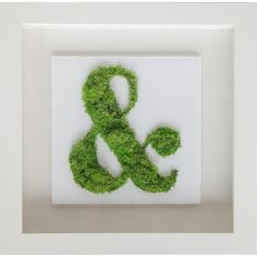 Found it at Joss & Main - Moss Ampersand Wall Decor, Oliver Gal