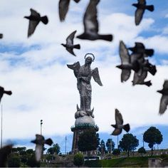 Entre el volar de las aves. La Virgen del Panecillo siempre se muestra reluciente. De los más grandes monumentos de la cuidad de Quito. Location: Quito, Pichincha.