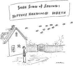 Cartoons from the Issue of April 22nd, 2013 : The New Yorker