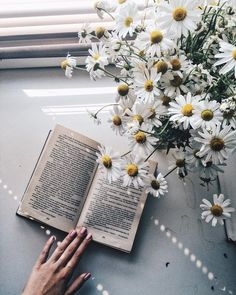 Find images and videos about photography, white and flowers on We Heart It - the app to get lost in what you love.