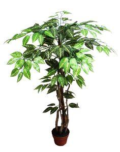 90 cm-es dekorációs fa Plants, Plant, Planets