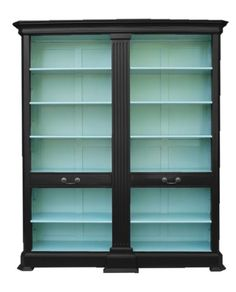 Wow...do this with an Ikea Billy bookcase with glass doors. Bookcase with Wow Factor ~ fill with seashells, coral, etc.
