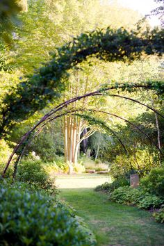 garden in South Hamptons - love the secret garden and all things like it