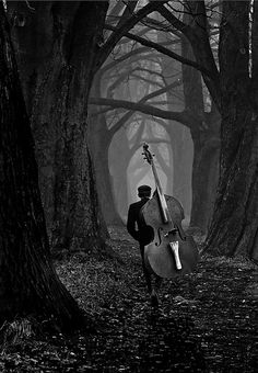 the musician by Loui Jover Black and white photography Forest Path, Dark Forest, Dark Photography, Black And White Photography, Cello Photography, Dark Places, Belle Photo, Dark Art, The Darkest