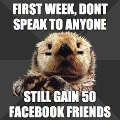 Roller Derby Otter, you speak the truth, its an instant way of making new amazing friends!