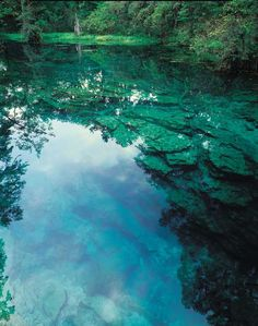 Peacock Springs State Park, Florida