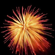 Red And Gold Fireworks by Cynthia Woods