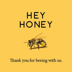 T T bees hey honey, thanks for bearing with ud Buzz Bee, Bee House, I Love Bees, Bee Friendly, Bee Art, Bee Theme, Save The Bees, Bee Happy, Bees Knees