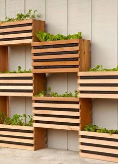 Crate shaped planters