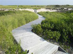Edmund Hollander Landscape Architects   Dune Side