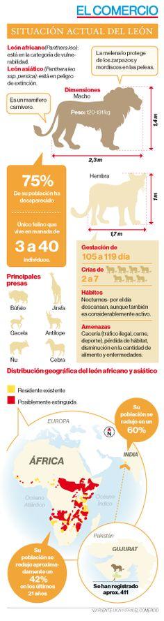 Infografía: LEON/ EL COMERCIO (Ecuador) autor: Verónica Jarrín D.