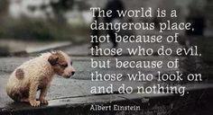 Albert Einstein.  This is so true its scary