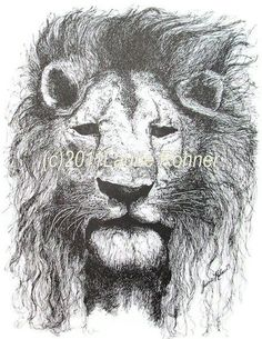 Print Pen and Ink Drawing of Lion titled A by BetweenTheWeeds, $15.00
