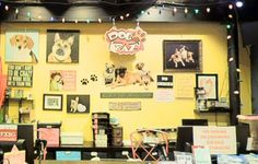 Dogkrazy - Pet Supplies Online, Pet Toys, Premium Dog Food
