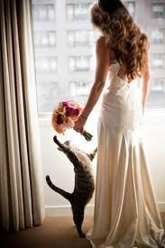 You don't usually see a cat in wedding photos. We adore this idea of getting your best fuzzy friend in on the photos without him leaving the room!