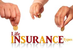 Get affordable Insurance in Killeen TX. Shawn Camp Insurance Agency Inc provides cheap renters insurance, auto insurance and motorcycle insurance in Killeen. Call at for a FREE insurance quote! Life Insurance Types, Best Life Insurance Companies, Universal Life Insurance, Buy Life Insurance Online, Group Insurance, Insurance Agency, Cheap Renters Insurance, Cheap Car Insurance, Independent Insurance