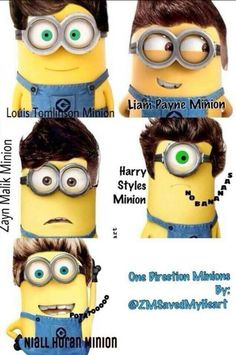 minions as one direction One Direction Minions, One Direction Imagines, I Love One Direction, Cute Minions, My Minion, Minion Stuff, Five Guys, Laughing And Crying, Perfect Boy