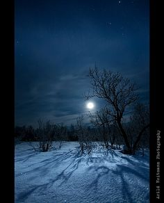 Pinner said: beautiful moon. this is what the moon looked like last night. Winter Szenen, Winter Moon, Winter Trees, Winter Night, Moon Shadow, Beautiful Moon, Beautiful World, Shoot The Moon, Moon Pictures