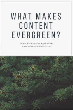 What makes content evergreen? Evergreen, Posts, Content, Writing, Create, Blog, How To Make, Messages, Blogging