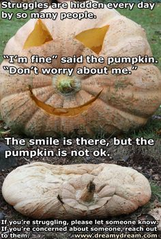 The Lesson a Giant Pumpkin Can Teach Us About Depression My Sweet Sister, Giant Pumpkin, Mental Illness, Depression, Mental Health, Anxiety, Let It Be, Teaching, Canning
