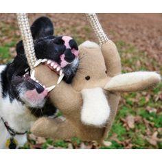 Aussie Naturals Wool Dog Toys