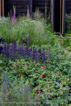 Andrew Wilson, #Chelsea Flower Show 2014, Cloudy Bay, Gavin McWilliams, Sensory #Garden