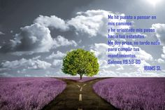 """Solo si hacen eso pudieran orar a Dios para que los conservara con vida para seguir efectuando la obra que él les ha asignado, a pesar de sus enemigos sanguinarios (Salmo 119:88). Al confesar que son esclavos de Dios porque se han dedicado a él mediante Cristo, y que necesitan captar el verdadero sentido de lo que él ha hecho que se ponga por escrito en Su Palabra, dicen: """"Tu siervo soy yo, dame entendimiento Para conocer tus testimonios"""". (Salmo 119:125.)"""