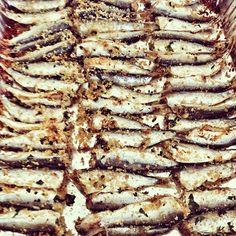 Sardoncini alla romagnola - Instagram by formicaatomica