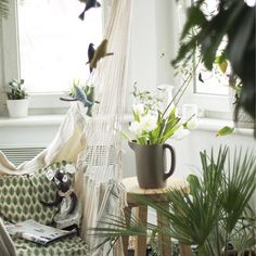 Popracowane, to teraz hamaczek, kawusia i odpoczynek ☺️ lazy time  #hamak #hammock #interiordesign #whitehouse #beauty #lovely #livethelittlethings #liveatuthentic #tv_living #global_ladies #greenhouse #tulips #flowers #instaflowers #instagood #instabest #picture #bscovibe #art #artsy #design #decor
