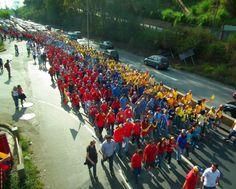 4:00pm #8M Cientos de sanantoñeros toman la recta de Las Minas formando una gran bandera humana pic.twitter.com/X6cjnJzrTH vía @dmurolo 08-03-2014