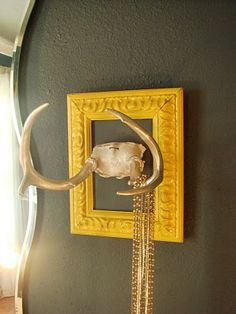 antler jewelry holder....hmmmm....maybe I should do this with our little bucks we don't have hanging