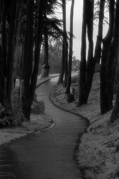 * The winding black and white road to nowhere.