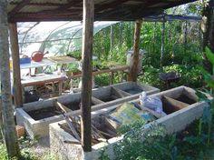 Transição 3.0: Postado Especial de Permacultura - Special Post of Permaculture
