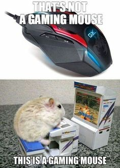 Gaming mouse (It looks more like a gaming hamster)