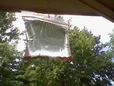 "Help keep pesky flies away from your BBQ... ""taping zip-lock bags to house doors putting the salt, lime, and pennies in the bag."""