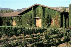 Napa Valley - #Clos #du #Val #Winery - Producer of well recognized wines.  Open daily 10AM - 5 PM. You can't go wrong with Clos du Val!  http://www.cheers2wine.com/napa-valley-wine-tours-napa.html