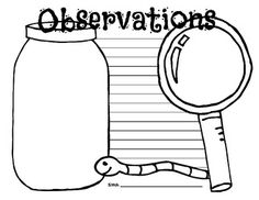 Science, Writing and the Great Outdoors:  Observation Grab