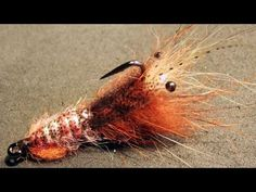 Shrimp / crawfish fly tying instructions by Ruben Martin Fly Fishing Tips, Fishing Hole, Crappie Fishing, Crappie Jigs, Fly Tying Tools, Steelhead Flies, Fly Casting, Saltwater Flies, Fly Tying Patterns