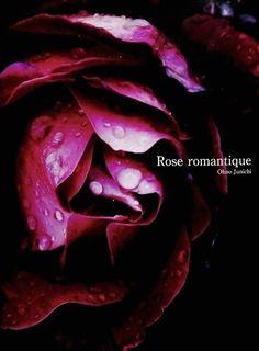 大野純一 Ohono Junichi Rose romantique