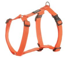 #DigitalIndia #MakeinINDIA #GoradiaIndustries #Tapeswebbingstraps  Dog harness for your dogs safety will be available in 3 colours red, black and blue.  For more details click on the below link or call us on +9833884973/9323558399 http://www.tapeswebbingstraps.in/