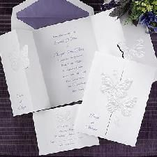 Graceful, pearl-embossed butterflies pull apart to display your invitation wording. Please indicate names to be printed on the front. At the top of your enclosure is a matching pearlized butterfly. Butterfly Wedding Theme, Butterfly Wedding Invitations, Discount Wedding Invitations, Inexpensive Wedding Invitations, Anniversary Invitations, Wedding Programs, Bridal Shower Invitations, Invitation Wording, Invitation Cards