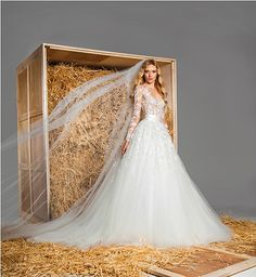 Many brides give you the, 'Yes, quiero' this year and have chosen her wedding dress, but many will still be looking for the dress of your dreams.