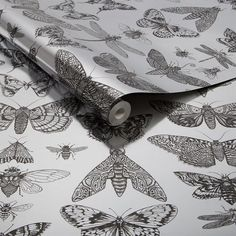 Sample Bugs Wallpaper in Silver from the Exclusives Collection by Graham & Brown Cheap Wallpaper, Wallpaper Online, Wallpaper Samples, Room Wallpaper, Discount Wallpaper, Modern Wallpaper Designs, Contemporary Wallpaper, Designer Wallpaper, Gold And Silver Wallpaper