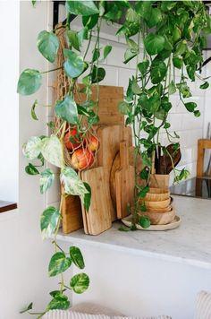 The White Sands Home of Vanessa Prosser in Palm Beach – Design. Japanese Minimalism, Interior Styling, Interior Design, Clem, Kitchen Office, Kitchen Dining, Kitchen Ideas, Beach Design, Blog Deco