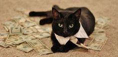 Lorsque le porte-monnaie se fait presque vide le 20 du mois, pas question de baisser les bras ! Voici 5 astuces pour passer ce cap et surtout vous éviter de payer des agios et des frais d'impayés.  Découvrez l'astuce ici : http://www.comment-economiser.fr/astuces-fins-mois-difficiles.html