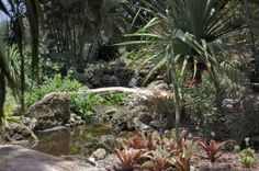 1000 Images About Places To Go In Florida On Pinterest Florida Palm Beach County And Key West
