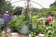 Permaculture Courses, Event Calendar, Calendar 2017, Spring Day, Spring 2015, Worm Farm, Recreational Activities, Fundraising Events, New Things To Learn