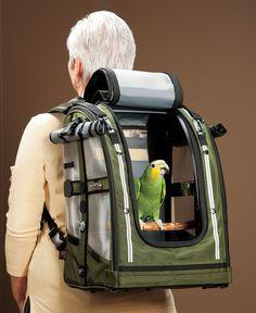 Pet Pocket Bird Carrier Touché Internet Pinterest Birds Pets And