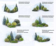 ландшафт хвойные композиции: 9 тыс изображений найдено в Яндекс.Картинках