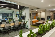 amicus-office-sydney-office-design-15